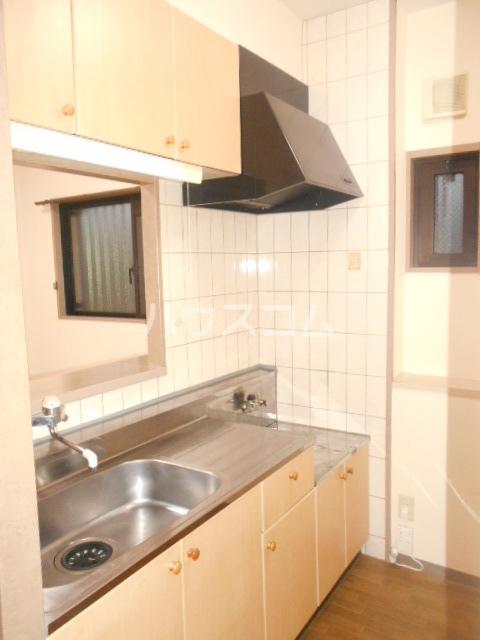 ソレアードパラシオン 202号室のキッチン