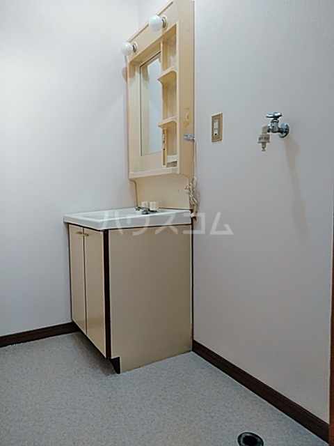 ホウルハウス神谷 B 202号室の洗面所