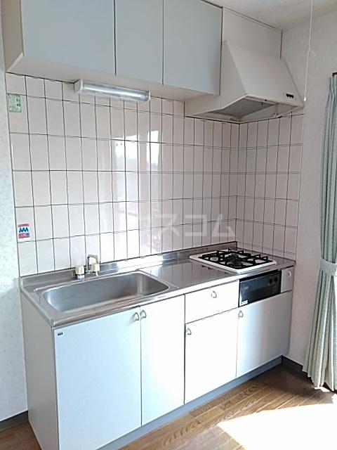 齋藤アパート 1号室のキッチン