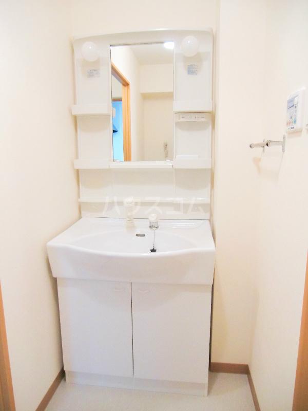 パディー江西 201号室の洗面所