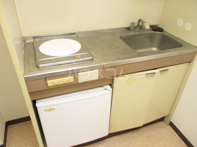 パークサイド・アイ 402号室のキッチン