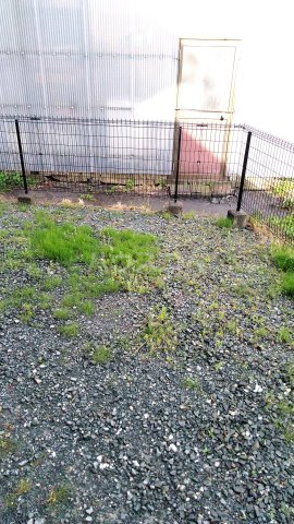 Riverside Satou 101号室の庭