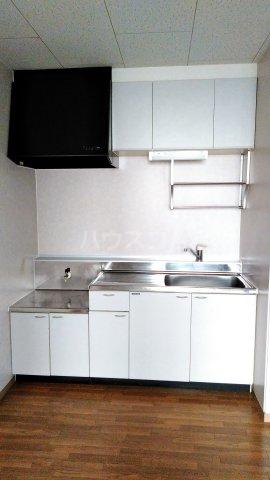 Riverside Satou 101号室のキッチン
