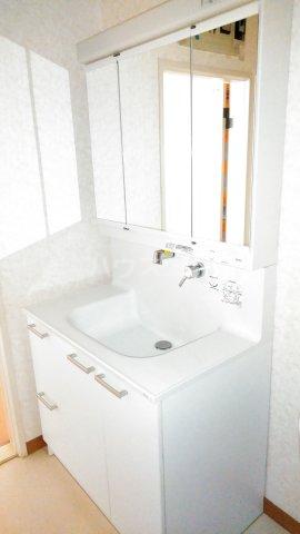 メゾンベルシャンブル 306号室の洗面所