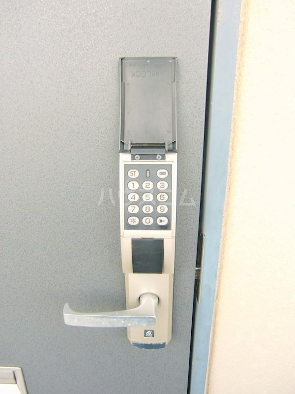 ハイライズ細島Ⅱ 105号室のセキュリティ
