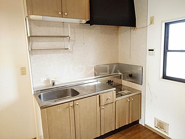 グリーンヒルズ E 203号室のキッチン