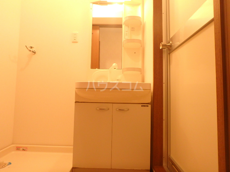 ラ・セフィーロⅦ 303号室の洗面所