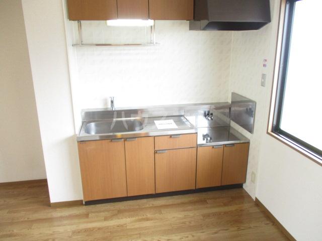 ヴィラフォーレA・B・C・D D-202号室のキッチン