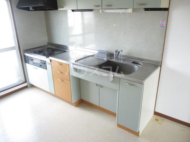 第一みつわ台ハイツ 502号室のキッチン