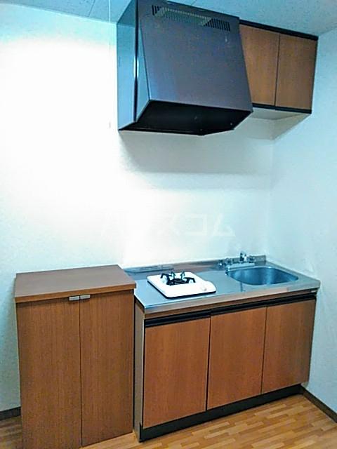 クリエイトダイアナⅡ 2A号室のキッチン