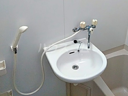 クリエイトダイアナⅡ 2A号室の洗面所
