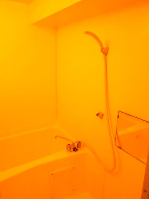 ラ・ポルト93 402号室の風呂