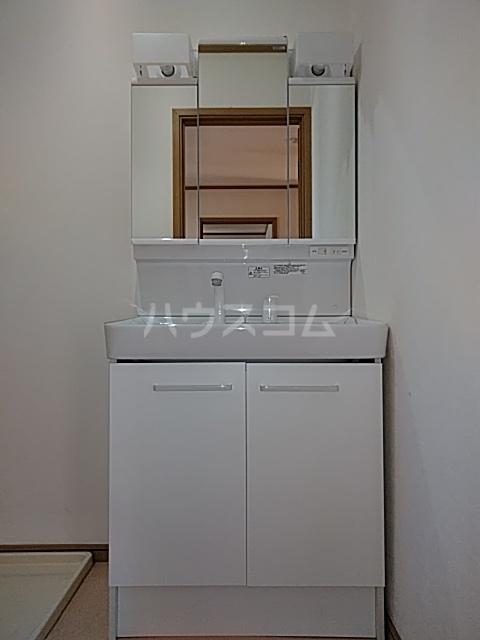 タウンサンロイヤル A205号室の洗面所