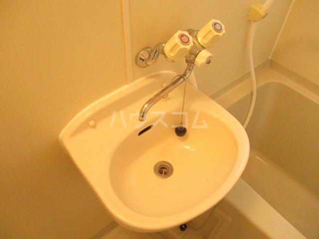 グリーンハイツ 2-202号室の洗面所