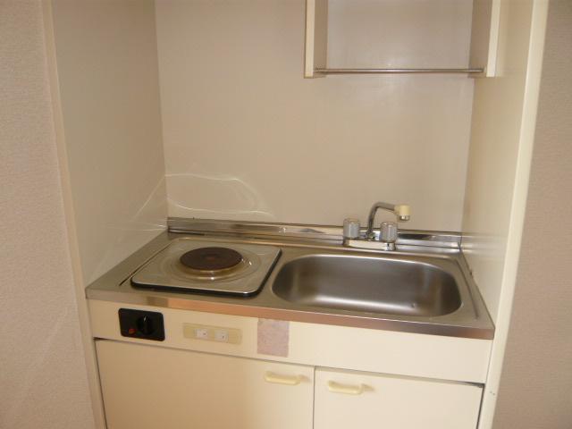 メゾン諸ノ木 203号室のキッチン