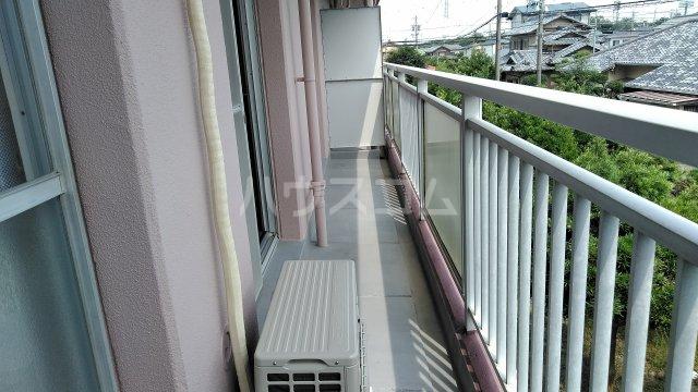 第1パークサイドマンション 205号室のバルコニー