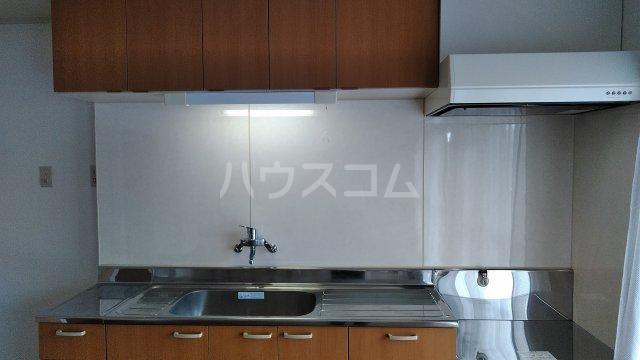 第1パークサイドマンション 205号室のキッチン
