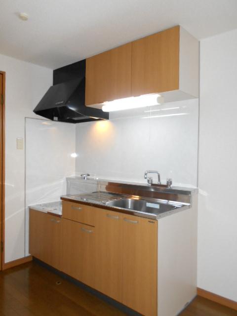 リナシメントA棟 203号室のキッチン