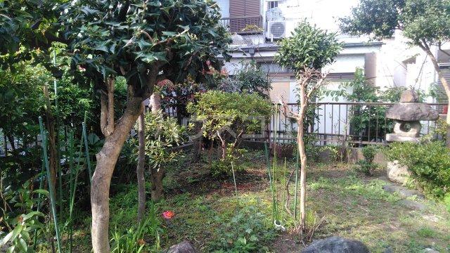 ミゾノコーポ 301号室の庭