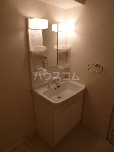 ハイツリービル 301号室の洗面所