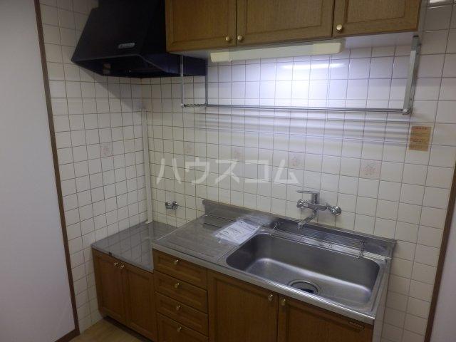 フローラ相川 206号室のキッチン