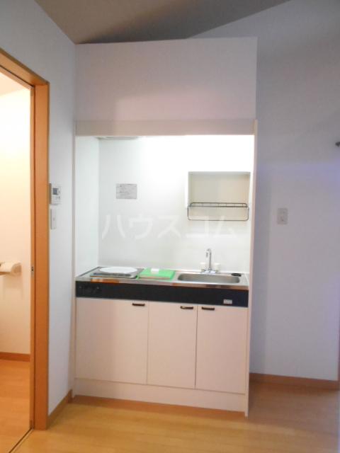 プリマヴェーラ世田谷 203号室のキッチン