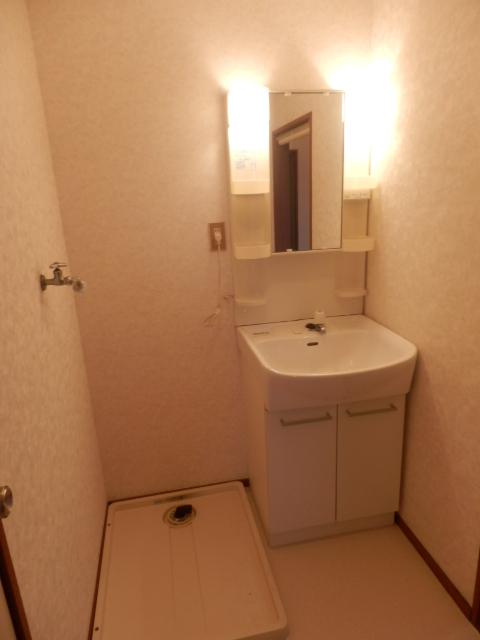 グリーンカーサ坂野 102号室の洗面所