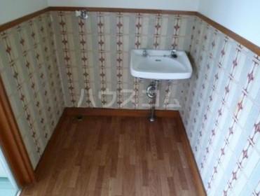 玉堤スカイハイム 202号室の洗面所