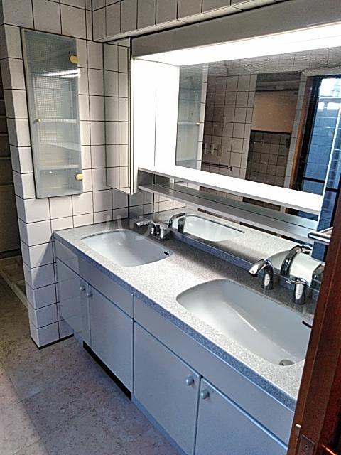 サンモール上用賀 401号室の洗面所
