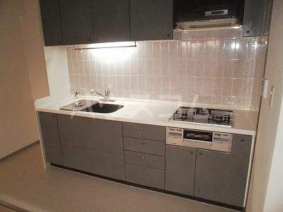 豊田神田町コーポラス 302号室のキッチン