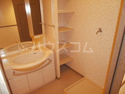 豊田神田町コーポラス 302号室の洗面所
