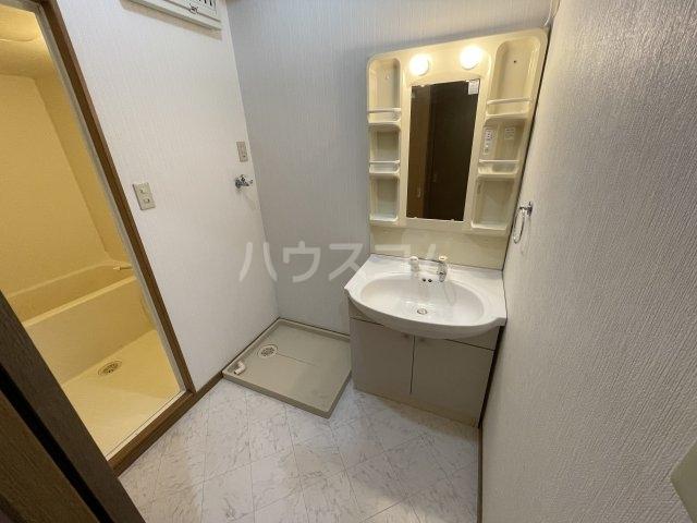 Chelini B号室の洗面所