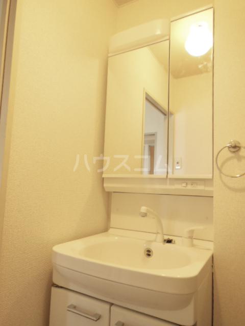 プリンセスミユキ 303号室の洗面所