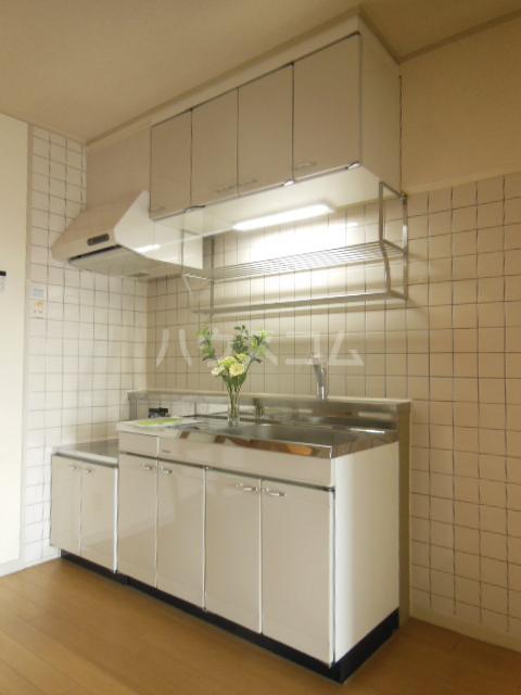 プリンセスミユキ 303号室のキッチン