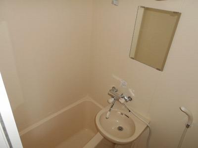 ハイツチェリーブロッサム 4F号室の洗面所