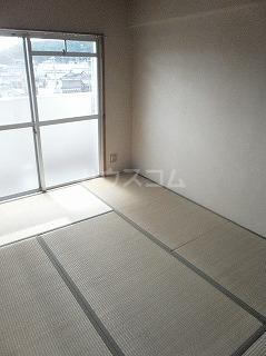 メゾン・ド・セリーヌ 303号室の居室