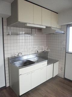 メゾン・ド・セリーヌ 303号室のキッチン