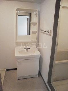 メゾン・ド・セリーヌ 303号室の洗面所