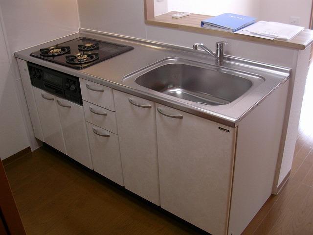 ビアンシュール美園 301号室のキッチン