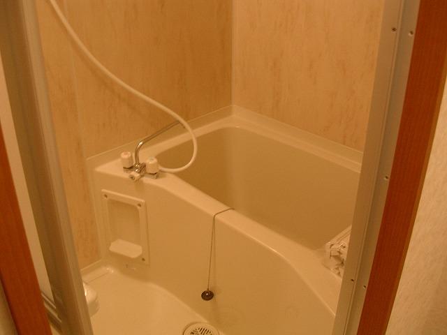 ビアンシュール美園 301号室の風呂