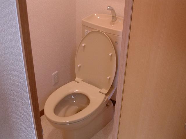 ビアンシュール美園 301号室のトイレ
