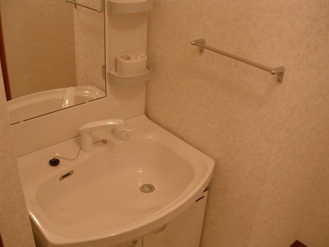 ビアンシュール美園 301号室の洗面所