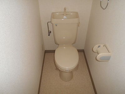 ハイツチェリーブロッサム 2A号室のトイレ