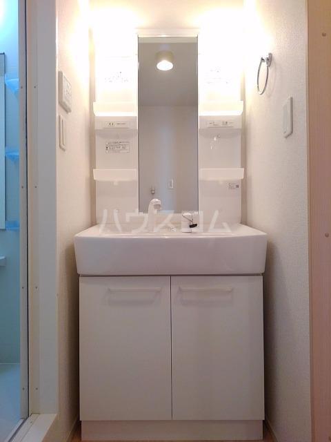 ライグッド Ⅰ 01010号室の洗面所
