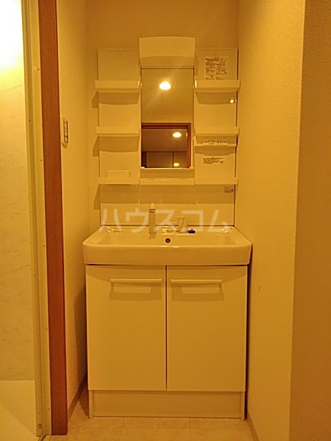 インセンスビレッジ 102号室の洗面所