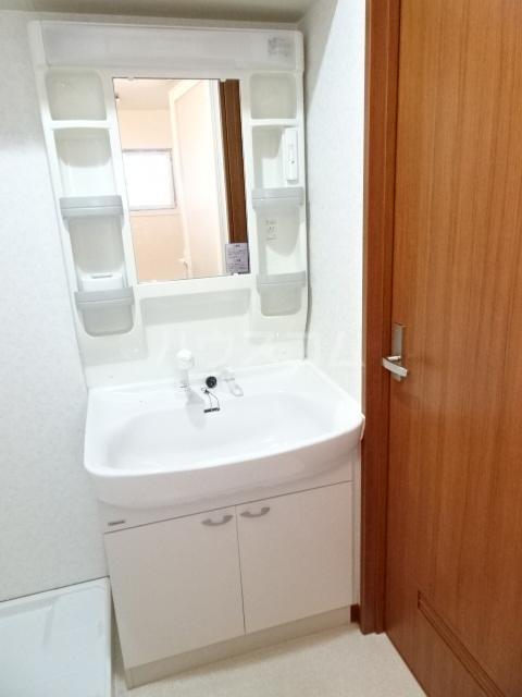 ピアノビル 301号室の洗面所