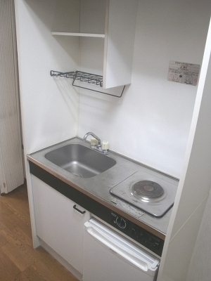 フェニックス248 207号室のキッチン