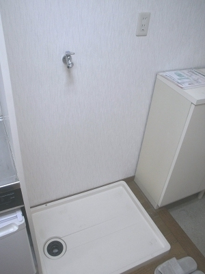 フェニックス248 207号室の洗面所