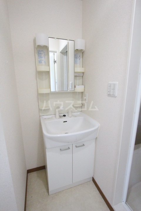 パセオ丸山 202号室の洗面所