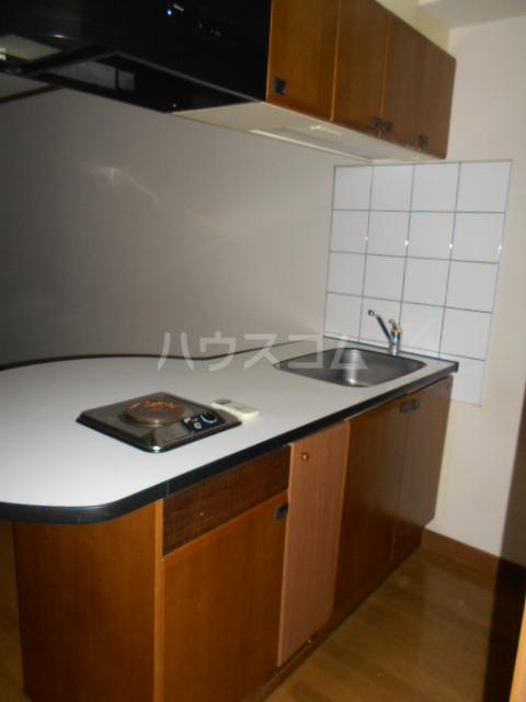 NEWTOWNHILLS 105号室のキッチン